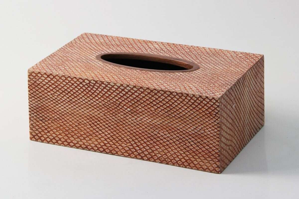 Tissue Box in Coral Boa Snakeskin by Forwood Design 4