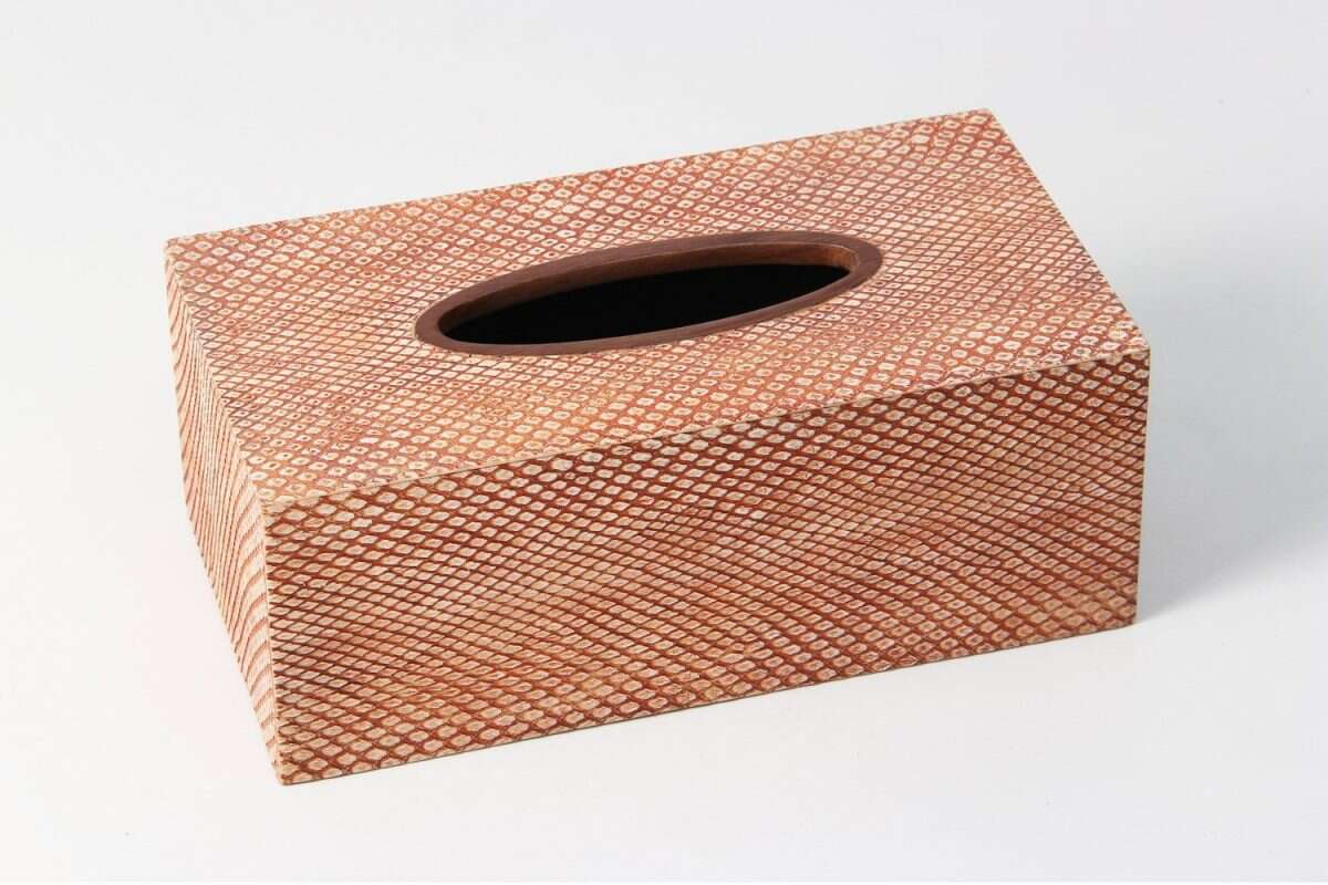 Tissue Box in Coral Boa Snakeskin by Forwood Design 1