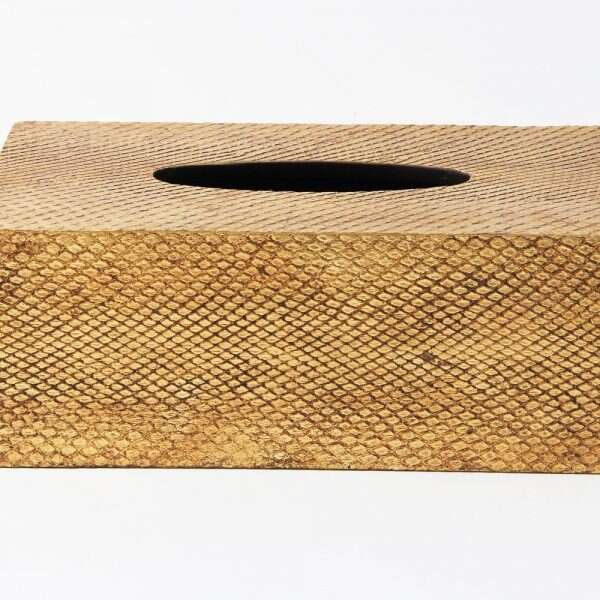 Tissue Box in Antique Gold Boa Snakeskin by Forwood Design 5