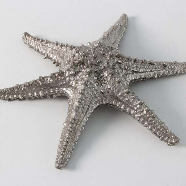 Star Fish Sculpture in Solid Stainless Steel by Forwood design 4