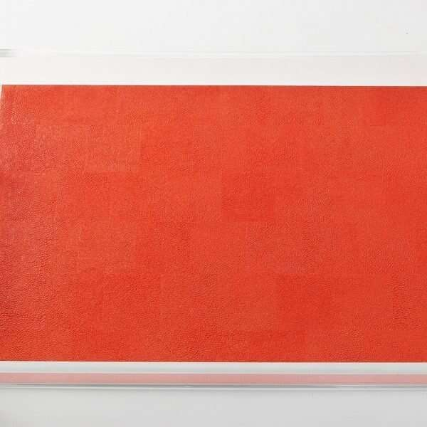 Acrylic Contemporary Tray in Tigerlily Orange Shagreen by Forwood Design 5