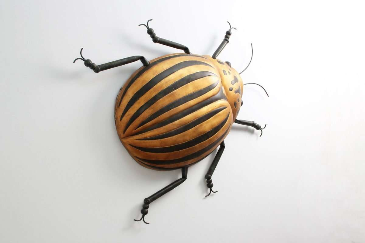 Beetle Bug Wall Art sculpture by Henry Forwood 4