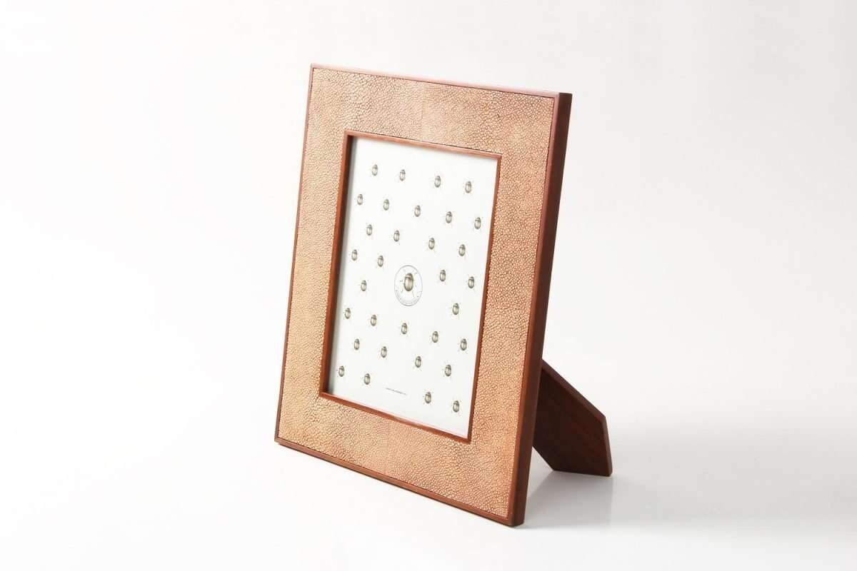 Classic Photo Frames in Coral Shagreen by Forwood Design 5