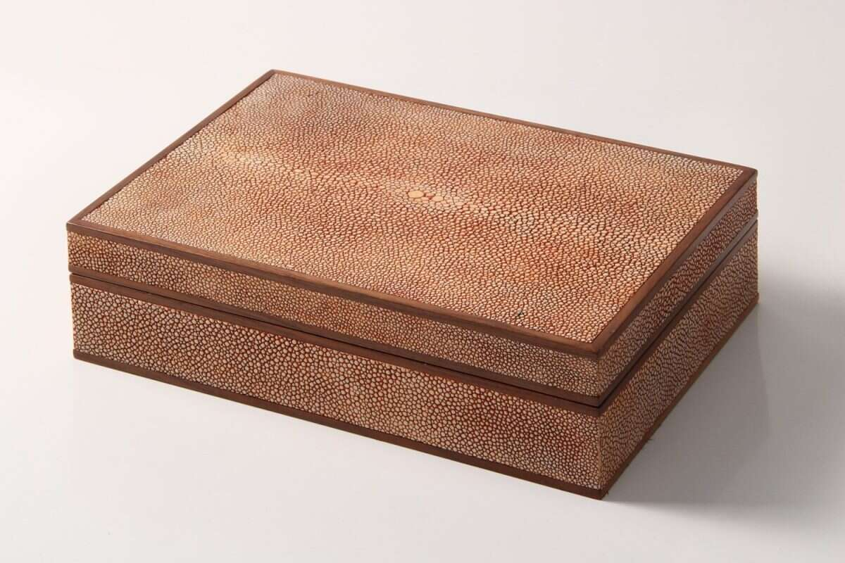 Jewellery Treasure Box in Coral Shagreen by Forwood Design 3