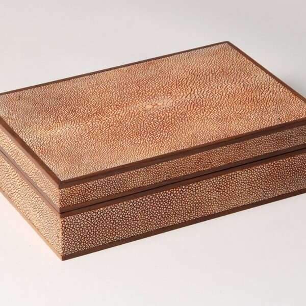 Jewellery Treasure Box in Coral Shagreen by Forwood Design 2