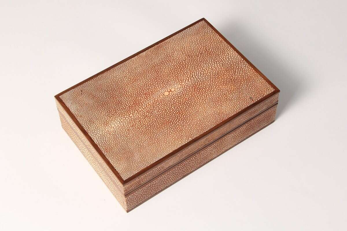 Jewellery Treasure Box in Coral Shagreen by Forwood Design 1