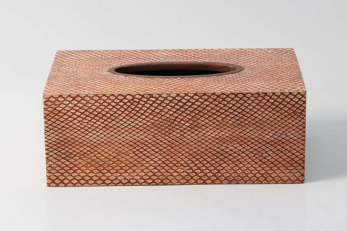 Tissue Box in Coral Boa Snakeskin by Forwood Design 3