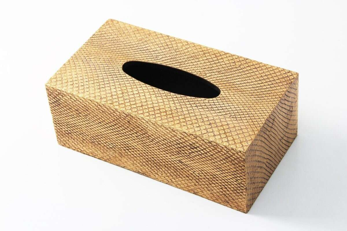Tissue Box in Antique Gold Boa Snakeskin by Forwood Design 2