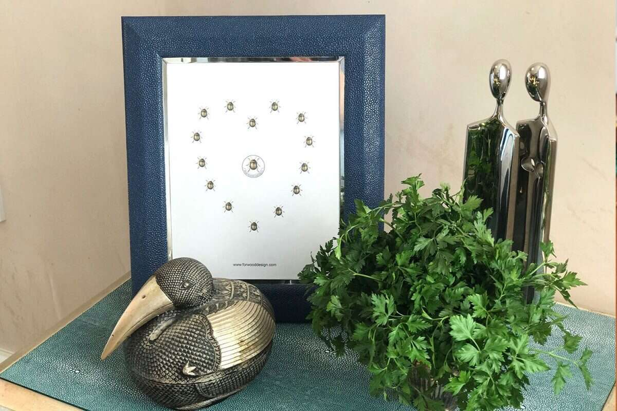 Bella Photo Frames in Nile Blue Shagreen by Forwood Design 6