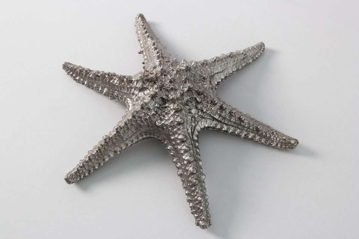 Star Fish Sculpture in Solid Stainless Steel by Forwood design 8