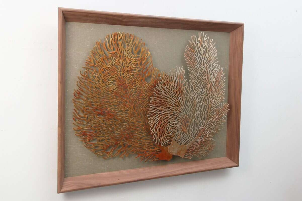 Coral Wall Art Sculpture by Henry Forwood 1