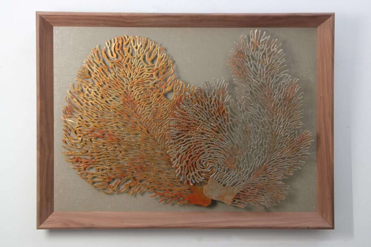 Coral Wall Art Sculpture by Henry Forwood 5