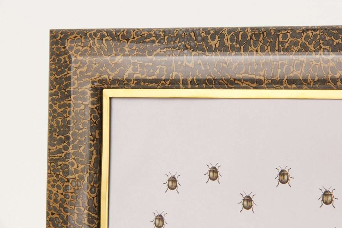 Bella Photo Frames in Eggshell by Forwood Design 6