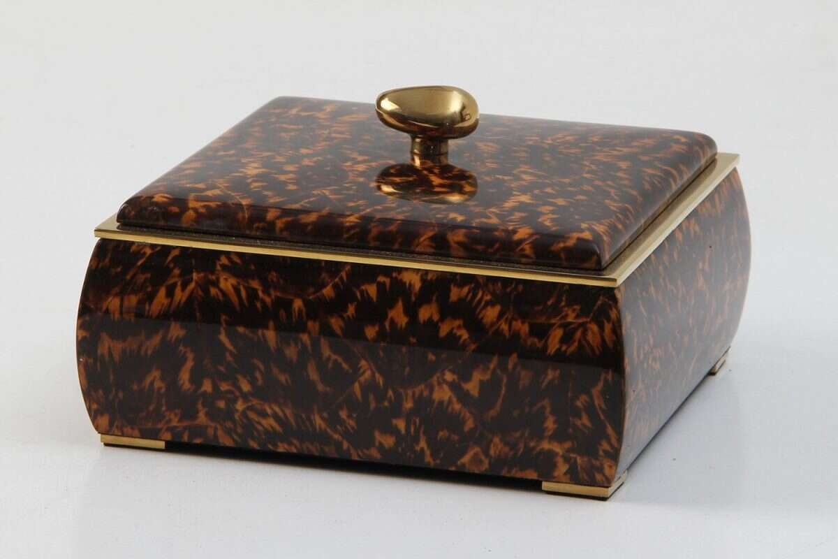 Sophie Box in Tortoiseshell by Forwood Design 2