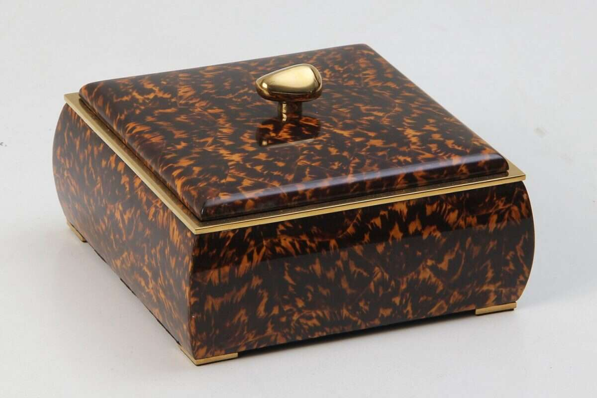 Sophie Box in Tortoiseshell by Forwood Design 1